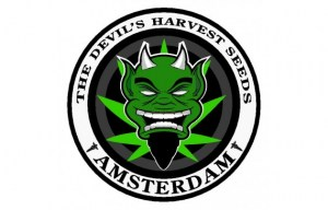 large-the-devils-harvest-seeds-logo9