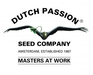 _vyr_3575_dutch-passion75