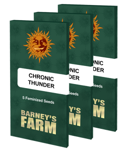 chronic-thunder_packet_large_seeds