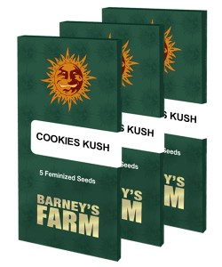 cookies-kush_packet_large_seeds