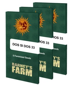 dos-si-dos-33_packet_large_seeds
