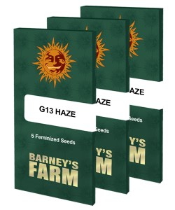 g13-haze_packet_large_seeds