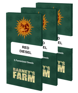 red-diesel_packet_large_seeds